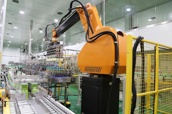 Back-of-Smart-Palletizing-Robot